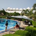 Pool & surrounding Green Area