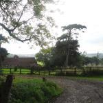Park House Grounds