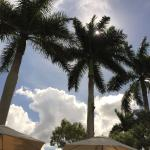 The Ritz-Carlton Golf Resort, Naples Foto