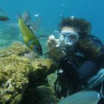 Try diving with Motif Diving