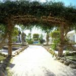 Foto de Panda Resort