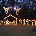 Beautiful display of xmas lights Swan Lake  December