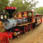 蒸氣小火車帶你進入非洲草原