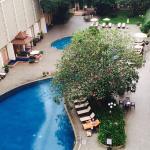 Pool - The Bayview Hotel Photo