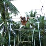 Flying Trapeze Adventure Phuket