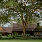 Sawela Property