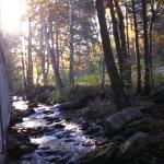 Sidney James Mountain Lodge Foto