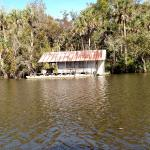 Apalachicola River cruise with Capt Gill