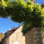Photo de La Cote des Monts Damnes