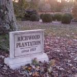 Plantation marker