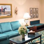 Premium Luxury Suite