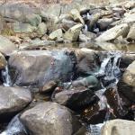 Stream running down rocks
