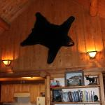 Bear Cabin Living Room
