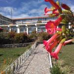 Flor sagrada del Imperio Inca : Cantuta y el hotel místico