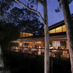 The Gunyah treetop dining room at dusk