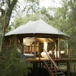 King Deluxe Safari tent accommodates up to 6 people sharing