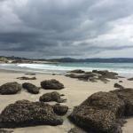 Photo de Kiwi Dundee Adventures