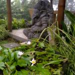 Ganesh sit still at  Mimpi Restaurant, Munduk Moding Plantation, Buleleng, Bali