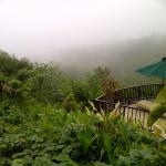 into the mist at  Mimpi Restaurant, Munduk Moding Plantation, Buleleng, Bali