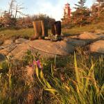 Rubber boot terrain