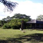 Photo of Kazuni Safari Camp