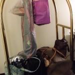 Enough luggage carts, no waiting!