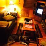 Cabin #4 Living room