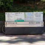 新宿新城飯店 對面的中央公園