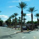The Oasis Las Vegas RV resort