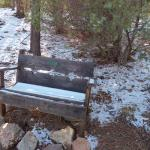 Snowy bench in November