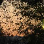 Lovely view, colour of Sky at sundown.