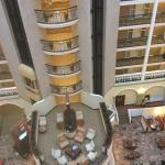 Embassy Suites by Hilton Chicago - O'Hare/Rosemont Foto