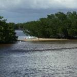 Everglades Day Safari Foto