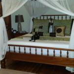 Spring House Bequia Foto