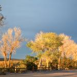 evening light at the Beatty RV Park, Nevada