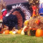 Our autumn decor - the corn stalk Mr. Turkey