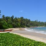 Around Sri Lanka - Day Tours & Excursions