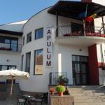 Photo of Hotel Apulum