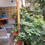 Photo de Casa Wayra Bed & Breakfast Miraflores