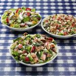 Apple Walnut Chicken Salad, Chopped Salad, Poppyseed Fruit with Chicken Salad
