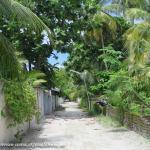 gate Rasdhoo