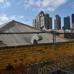 Sicht auf die Skyline von Melbourne