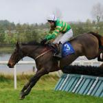A Great View and Jody McGarvey jumping the last to win The Martinstown Opportunity Maiden Hurdle