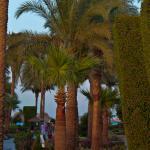 Foto de Hotel Ali Baba