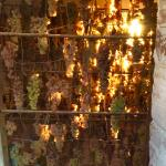 Grapes drying for their Vin Sante dessert wine