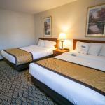 Standard 2 Queen Bed