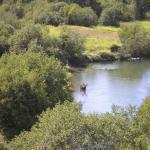 Photo de Little Spokane Natural Area