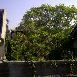Pande Permai Bungalows