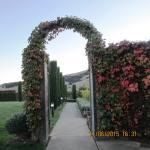 Flora Archway