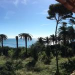 Foto di Hotel L'isola